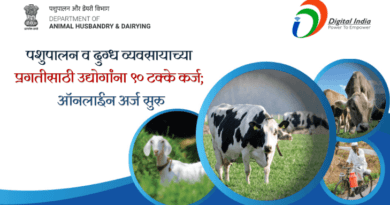 Animal Husbandry and Dairy Business