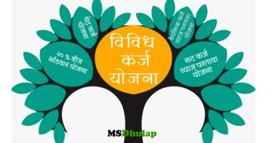 Various loan schemes